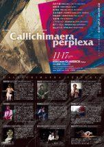 Callichimaera perplexa カリキマエラ・ペルプレクサ(不可解で美しいキメラ)
